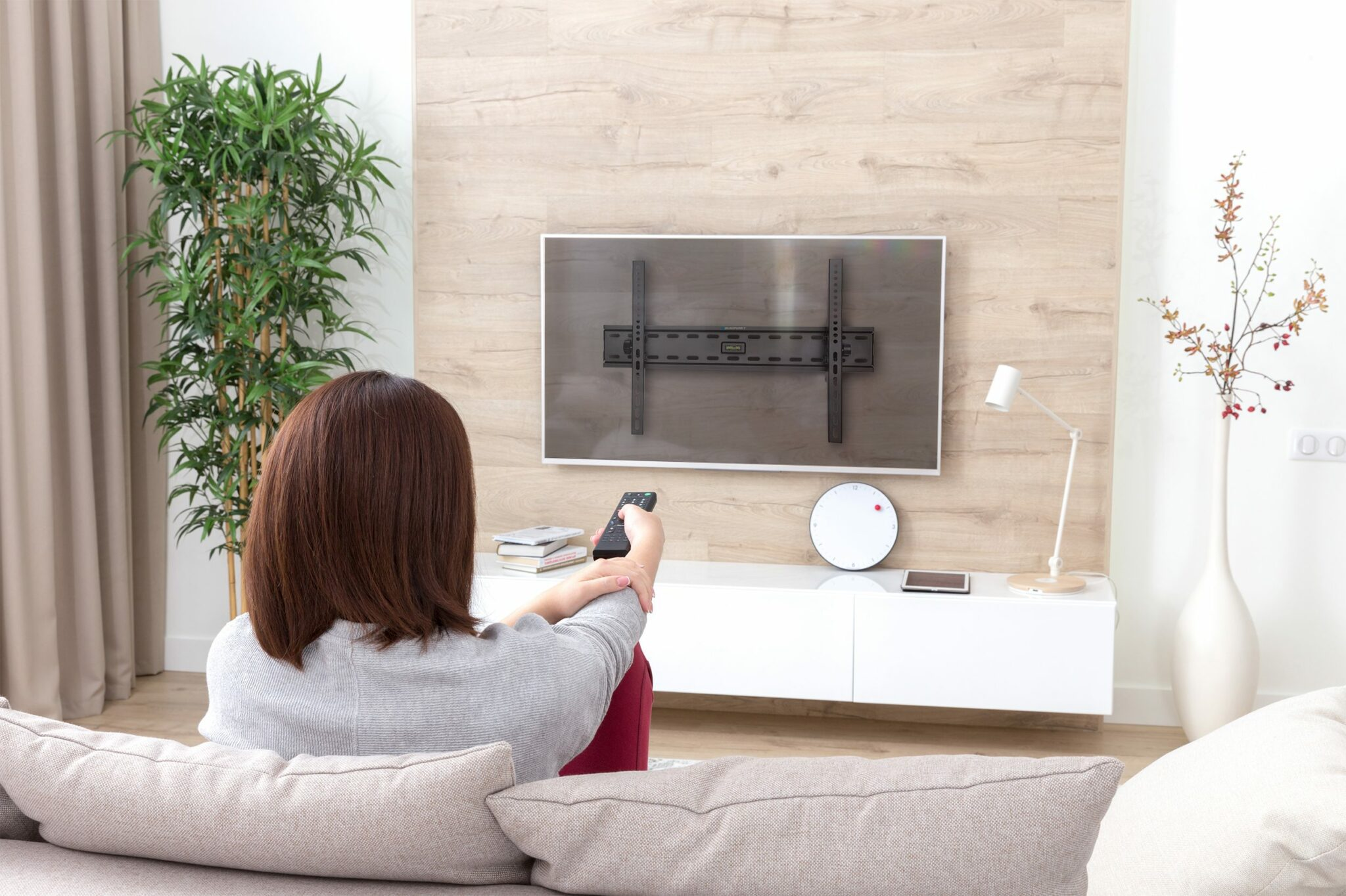 a Techvisionelectronics TV mount